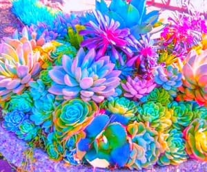 art, colorfull, and colors image