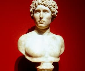 art, bust, and history image