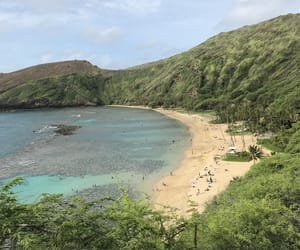 beach, Honolulu, and Island image