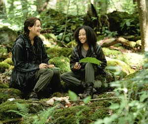 rue, hunger games, and the hunger games image