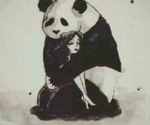 black and white and panda image