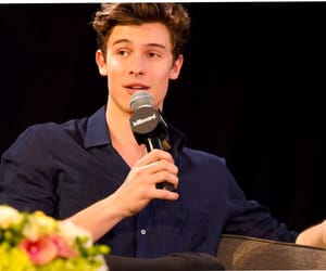 awww, mendes army, and shawn image