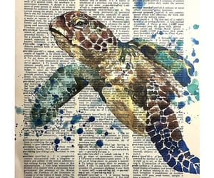 art, dictionary, and turtle image