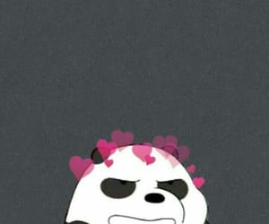 panda, wallpaper, and lockscreen image