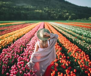 flowers, girl, and mountain image