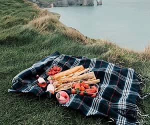 food, nature, and picnic image