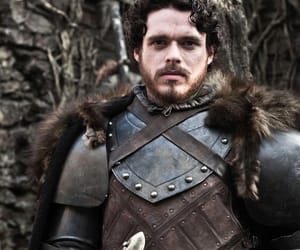 stark, game of thrones, and king in the north image