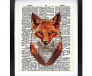 fox and wild animals image