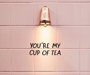 pink, quotes, and tea image
