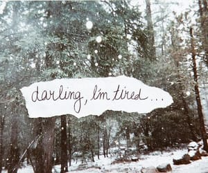 quotes, text, and darling image