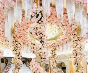 Fleurs, pink, and magnifique image