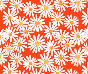flowers, background, and yellow image