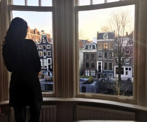 adventures, life, and netherlands image