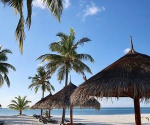 Maldives, paysage, and voyage image