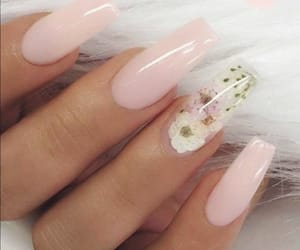 nails and unhas image