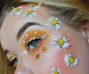 beauty, daisy, and floral image
