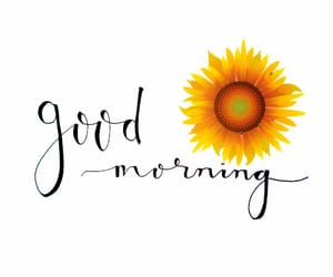 good morning and hope image