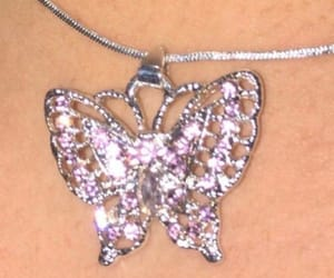 butterfly and necklace image