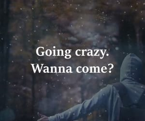 crazy, life, and come along image