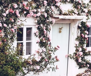 house, rose, and flowers image
