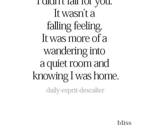 feelings, quote, and quotes image