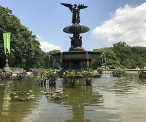 Central Park, ville, and new-york image
