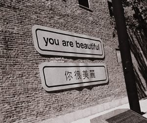aesthetic, beautiful, and quotes image