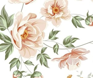 background, elegant, and flowers image