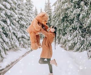 bear, beautiful, and Dream image