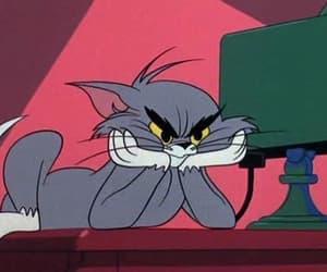 Tom, cartoon, and cat image