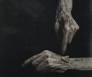 elderly, hand, and moth image
