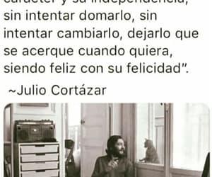felicidad, frases en español, and independencia image