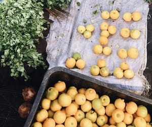 citrus, color, and food image