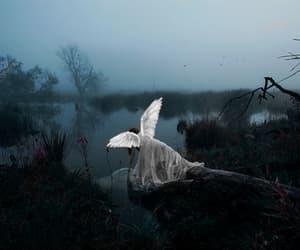 angel, fantasia, and anjos image