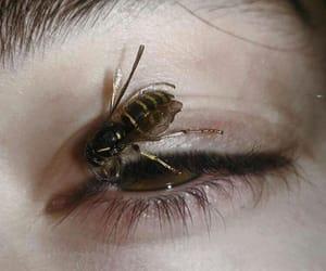 alternative, bee, and hurt image
