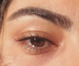 brown eyes, eyes, and thick eyebrows image