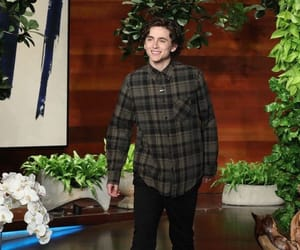 timmy, gorgeous boy, and the ellen show image