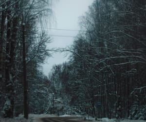 aesthetics, forest, and road image