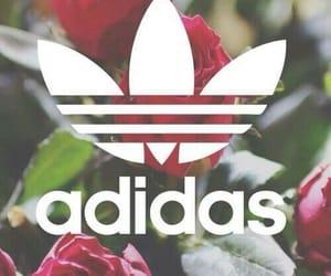 adidas originals, Logo, and wallpaper image