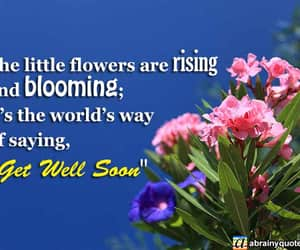 bloom, get well, and get well soon image