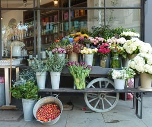 florists in lahore image