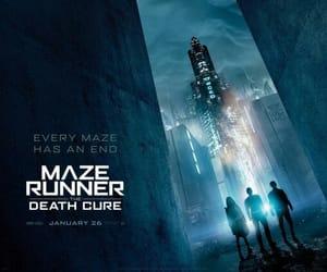 movie, tumblr, and maze runner image