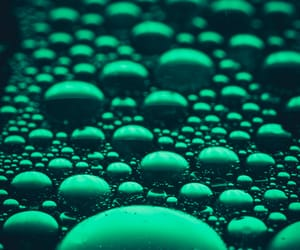 aesthetic, bubbles, and photography image