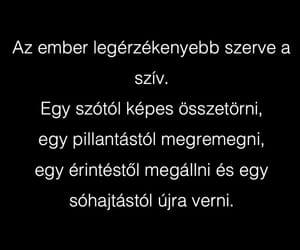 hungarian, magyar, and szív image