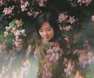 beauty, botanical, and flowers image
