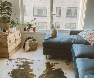 living room, sunlight, and urban outfitters image