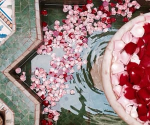 flowers, water, and morocco image