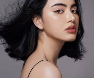 beauty, shorthair, and thailand image