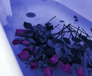 rose, bath, and flowers image