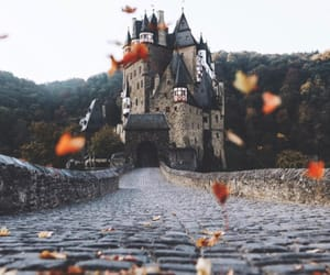 autumn, castle, and flowers image